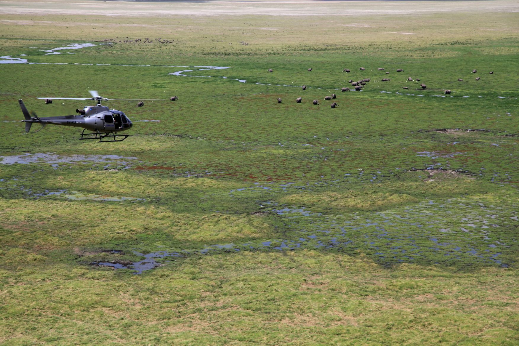 africa-family-safari-9-heli-elephants