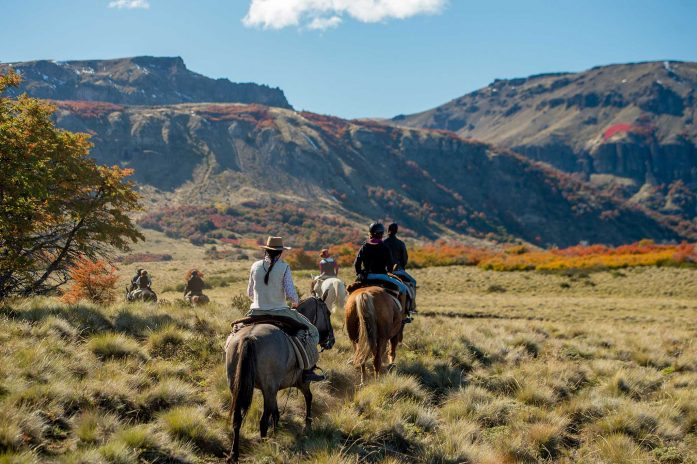 Horse trekking through the wilderness