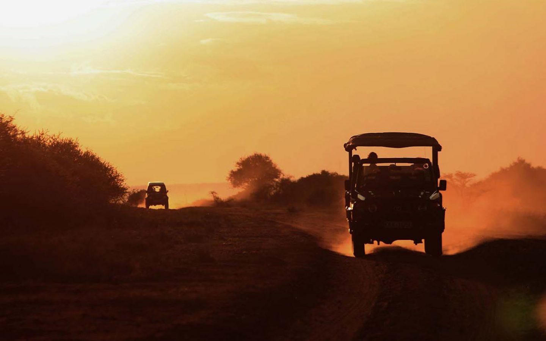 A Classic East African Safari